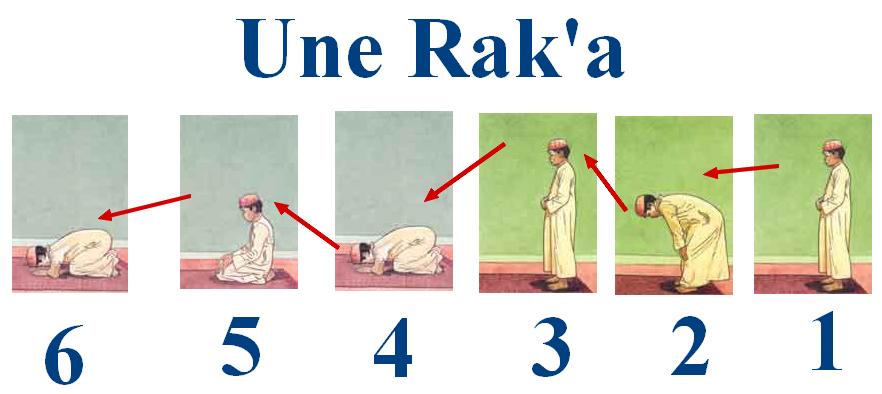 Extrêmement Les piliers, les obligations et les sunnahs de la prière | Xamxam  UX02