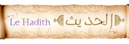 -le-hadith-livre